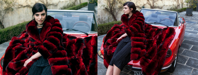 wonderful furs